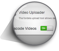 Flexible, scalable video transcoding